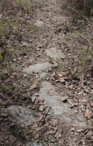 7.Troço de via romana Mouta - Espiúca